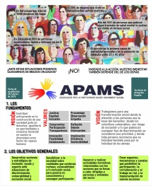 APAMS1castellano